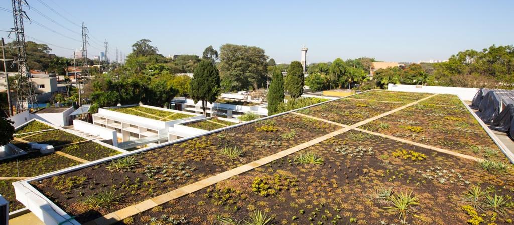 Telhado verde em São Paulo