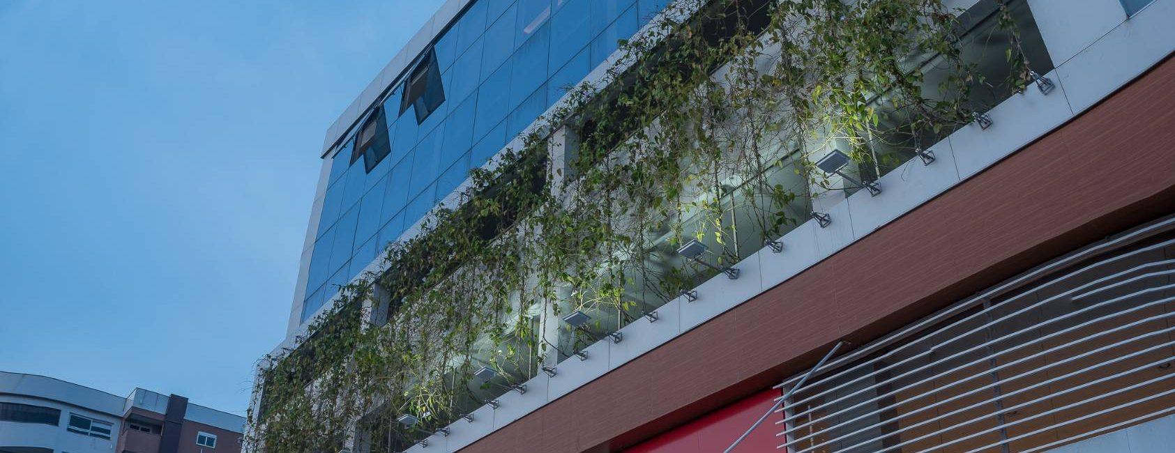 Brise Vegetal para Fachadas Verdes Prédio