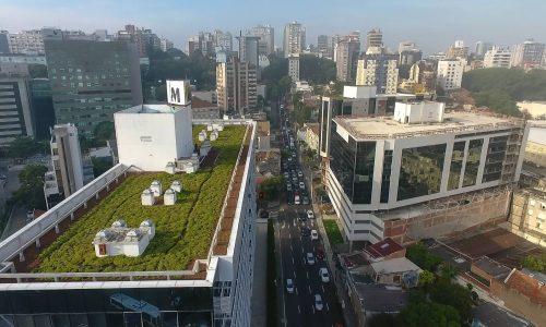 Telhado Verde Laminar Alto - Cisterna Ecológica - galeria 2