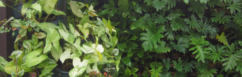 Articulated Vertical Garden