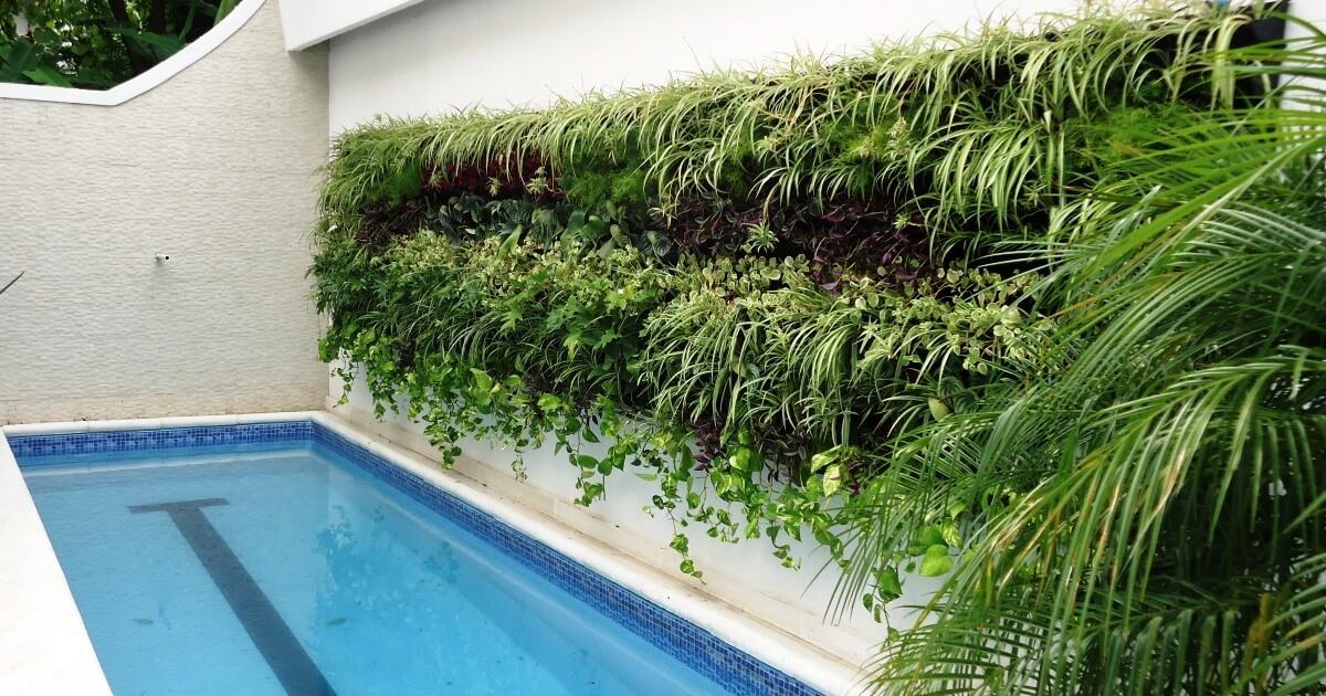 jardim vertical externo:Jardim Vertical Externo na piscina