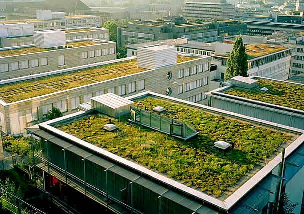 Resultado de imagem para infraestrutura sustentável