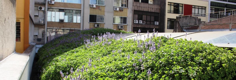 Transforme simples telhados em jardins