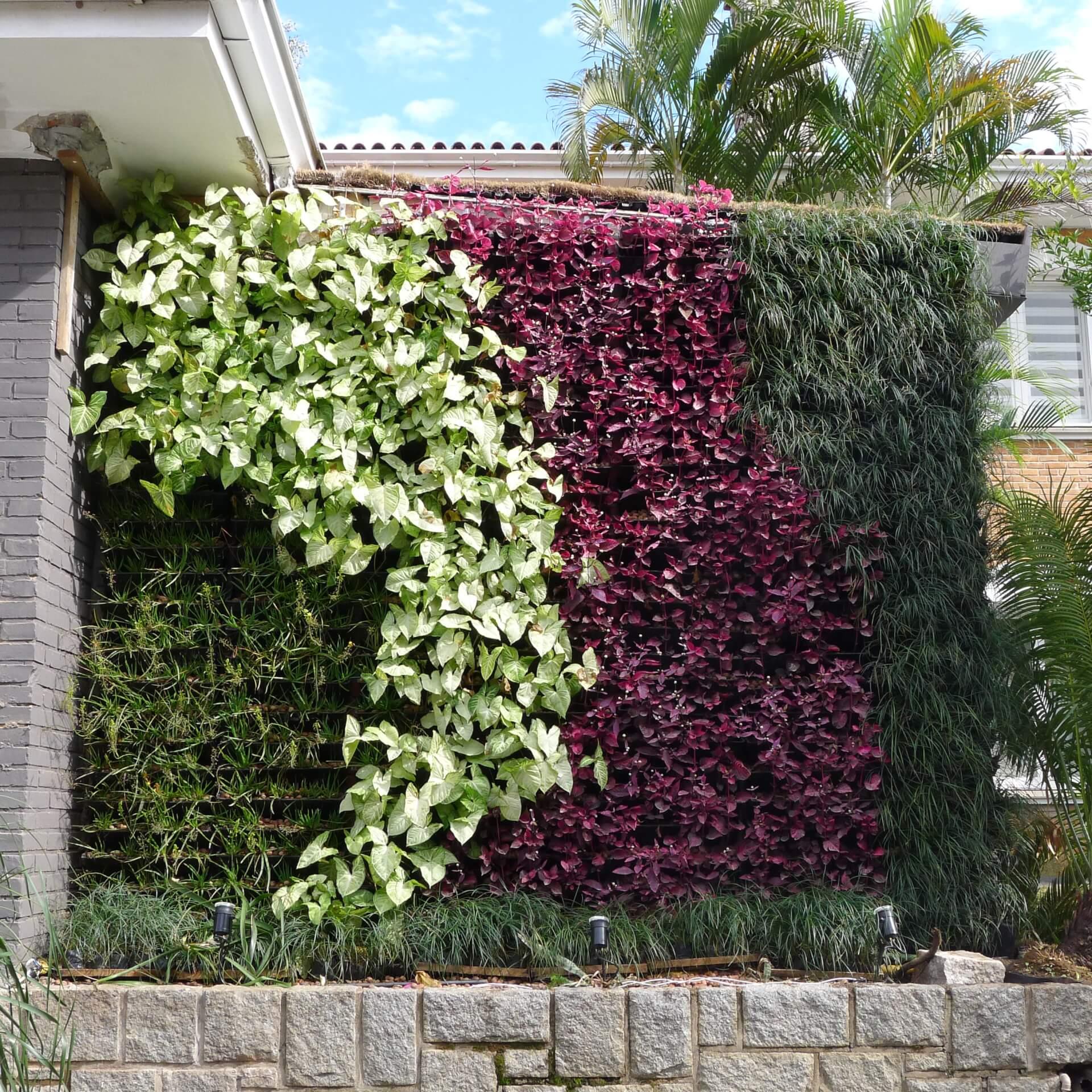 Galeria de Fotos Ecotelhado Ecotelhado #673441 2736x2736 Banheiro Com Jardim Vertical