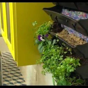 casa-e-jardim-quartos.jpg