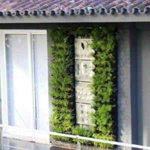 como-fazer-jardim-vertical-de-samambaia.jpg