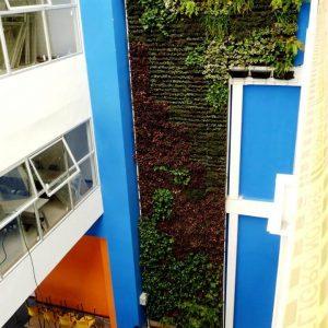 jardim-de-parede-como-fazer.jpg