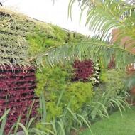 Jardim Vertical decorando ambientes externos