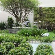 Jardim Vertical no pátio do condomínio