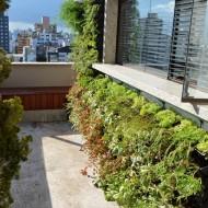 Jardim Vertical na janela do terraço
