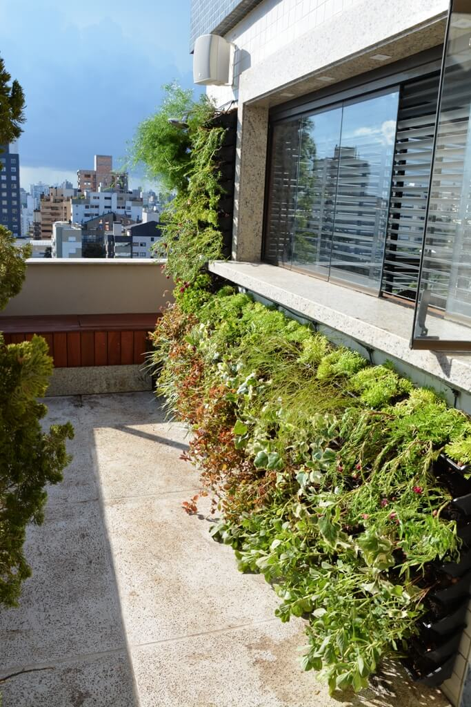 jardim vertical terraco:Jardim Vertical Canguru