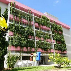 plantas-jardim-vertical-externo.jpg