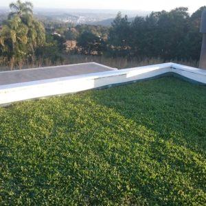 como-fazer-telhado-verde-barato.jpg