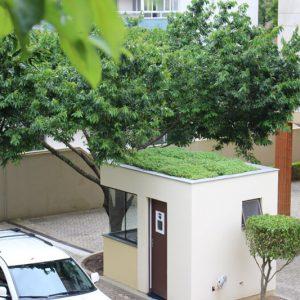 telhado-verde-como-construir.JPG