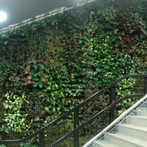 como-fazer-jardim-vertical-interno57448ffe21a18.jpg