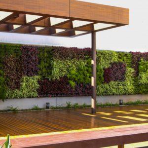 como-fazer-um-jardim-na-parede-1024x682