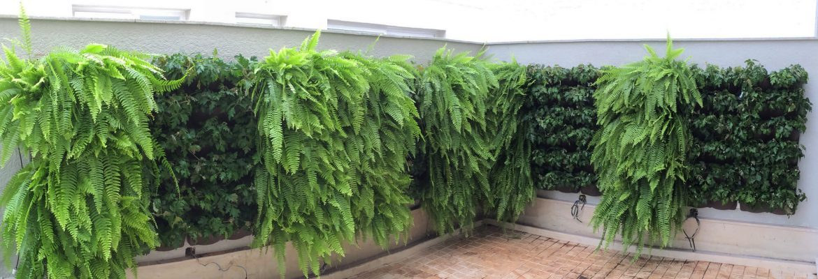 Vertical Garden Rental