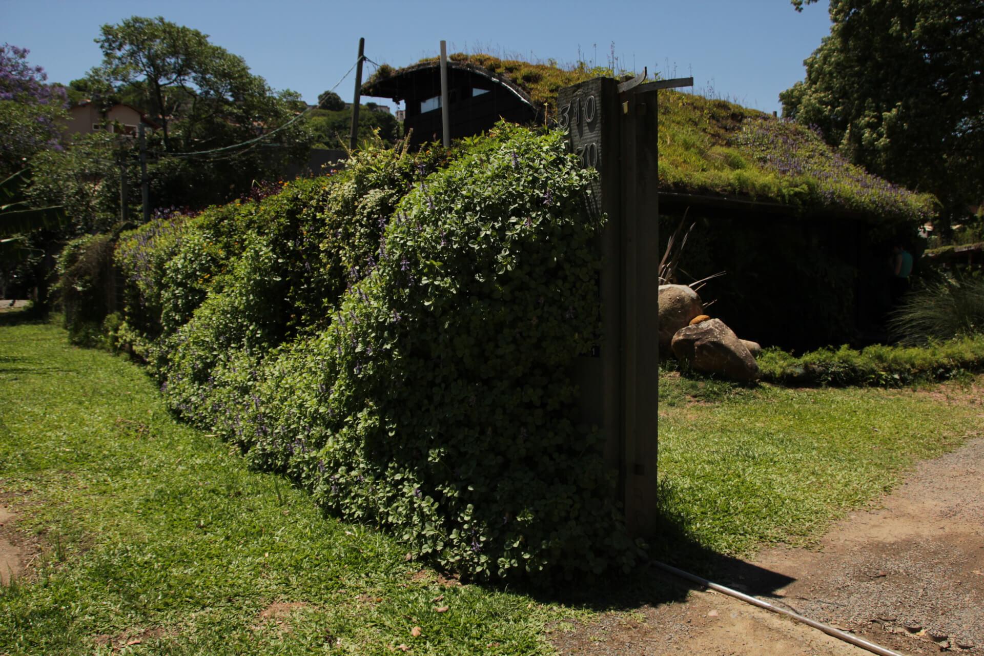 O Muro Verde pode ser aplicado em diferentes projetos arquitetônicos.
