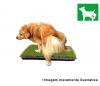 cachorro_micmoita_retangular2