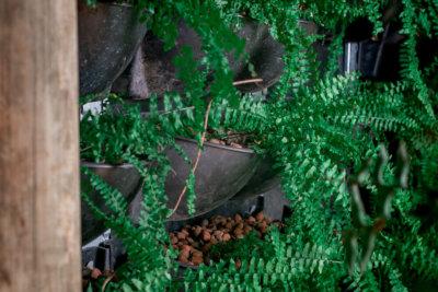 Jardim Vertical Mamute