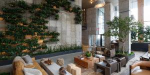 sala de estar com arquitetura biofílica