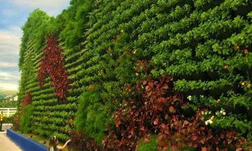 jardim-vertical-BourbonShopping-ecotelhado