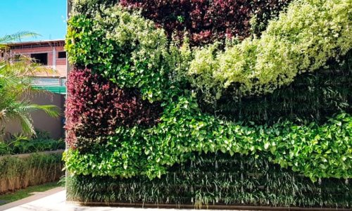 jardim-vertical-Cuiabá-ecotelhado