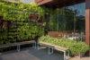 jardim-vertical-ecotelhado-Sorveteria Gianluca Zaffari