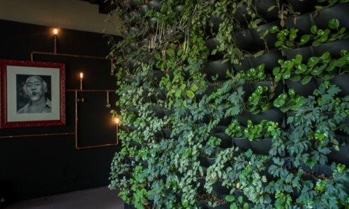 jardim-vertical-Miagui-ecotelhado