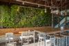 jardim-vertical-Sorveteria Gianluca Zaffari