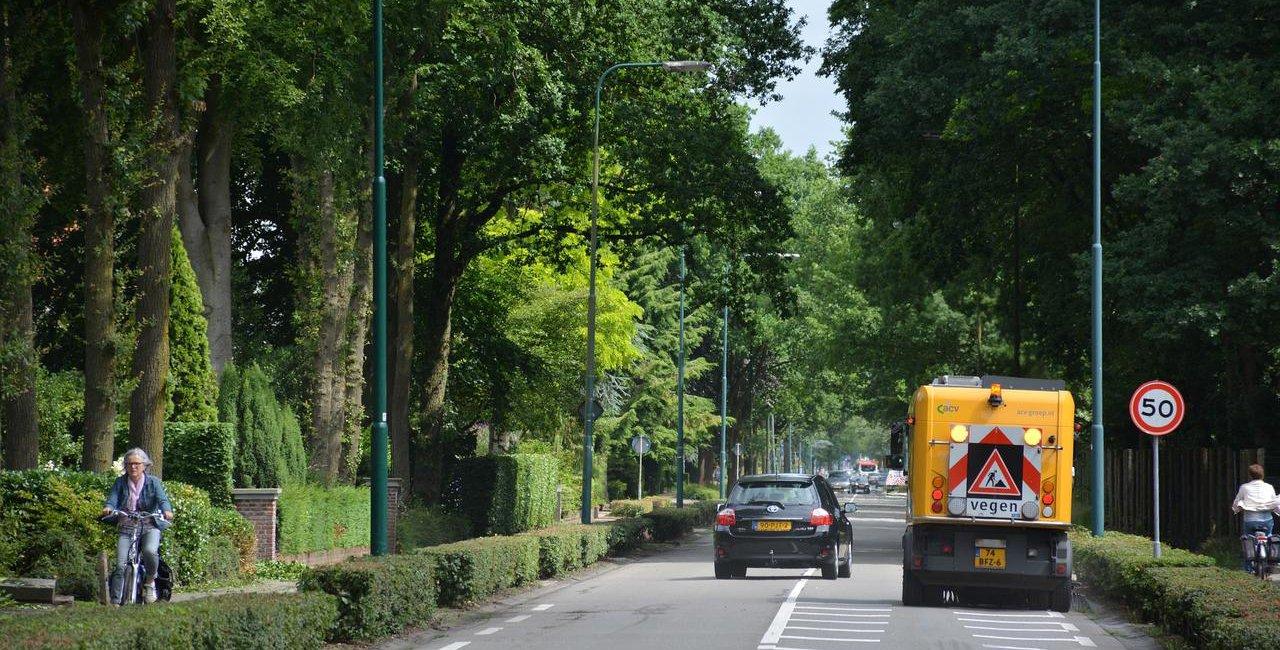 arborização-urbana