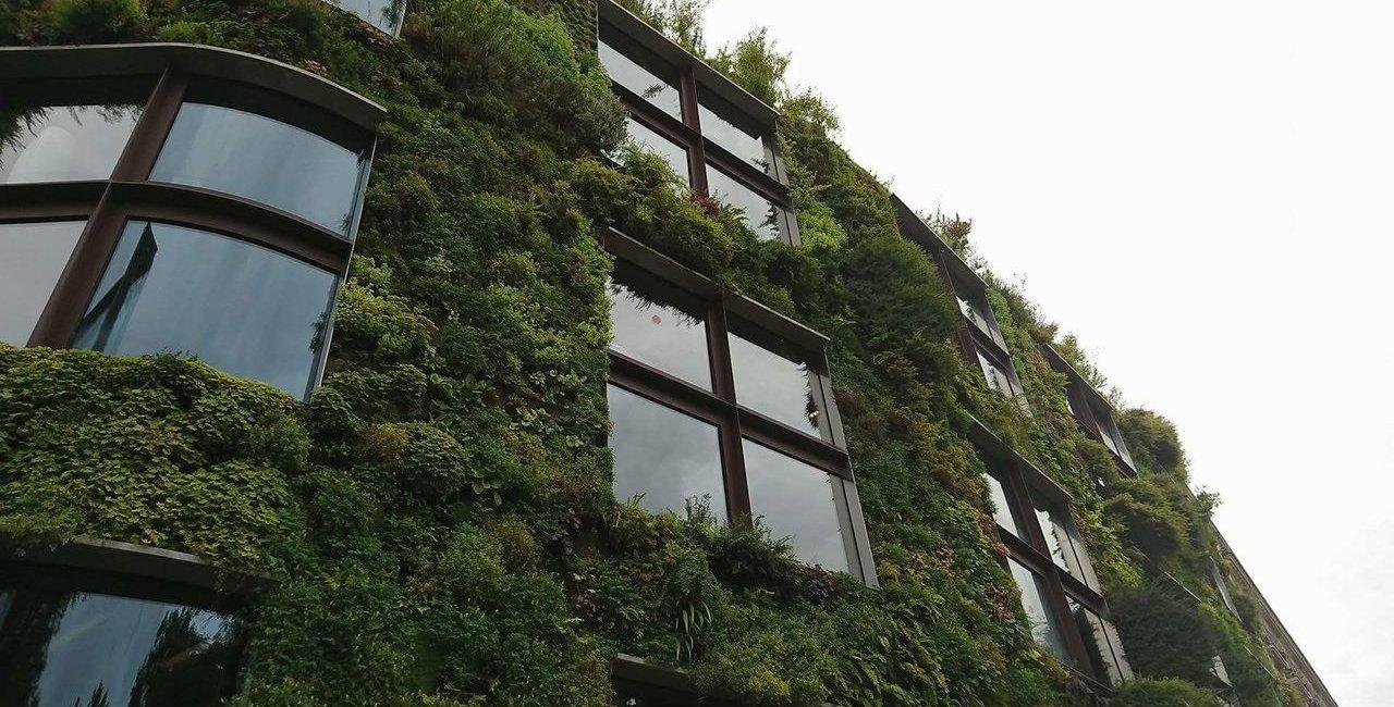 benefícios-do-jardim-vertical