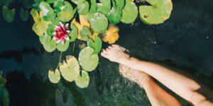 piscina-natural-em-casa