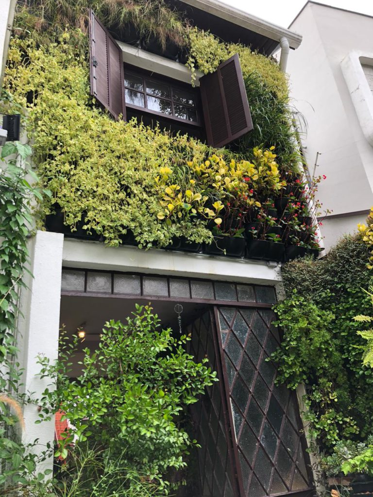 biofilia na arquitetura com jardim vertical