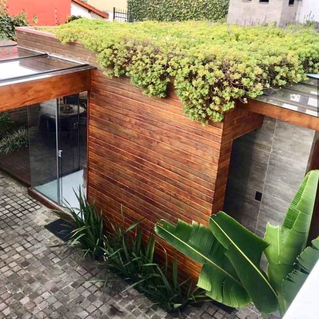 exemplo de projeto comercial que inclui biofilia na arquitetura