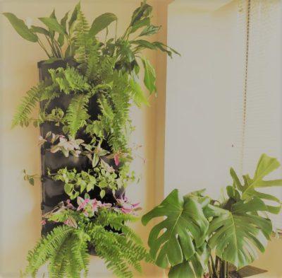 kit 3 vasos jardim vertical mamute 2 unidades instaladas