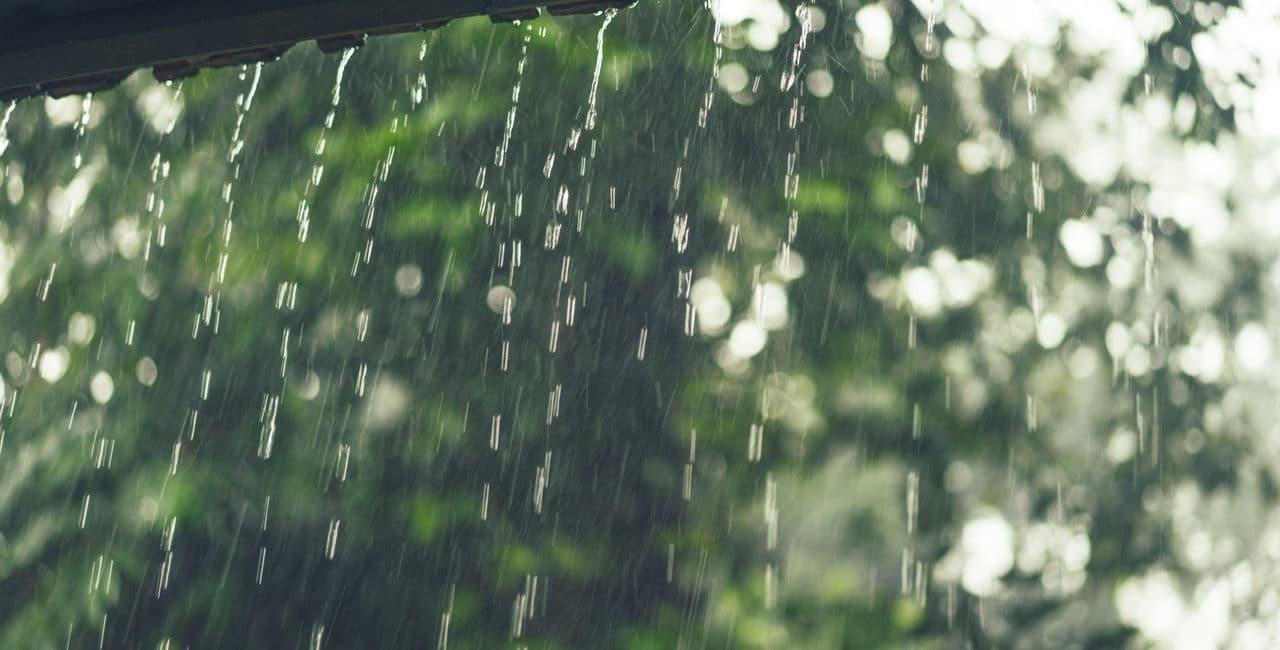 goteiras-no-telhado-jardins-de-chuva