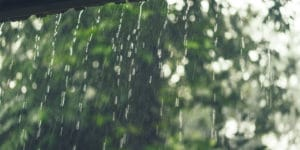 jardins-de-chuva