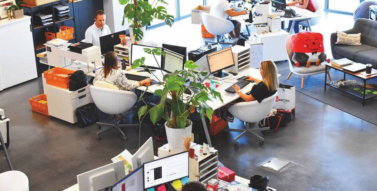 pessoas-computadores-paisagismo-em-escritorios