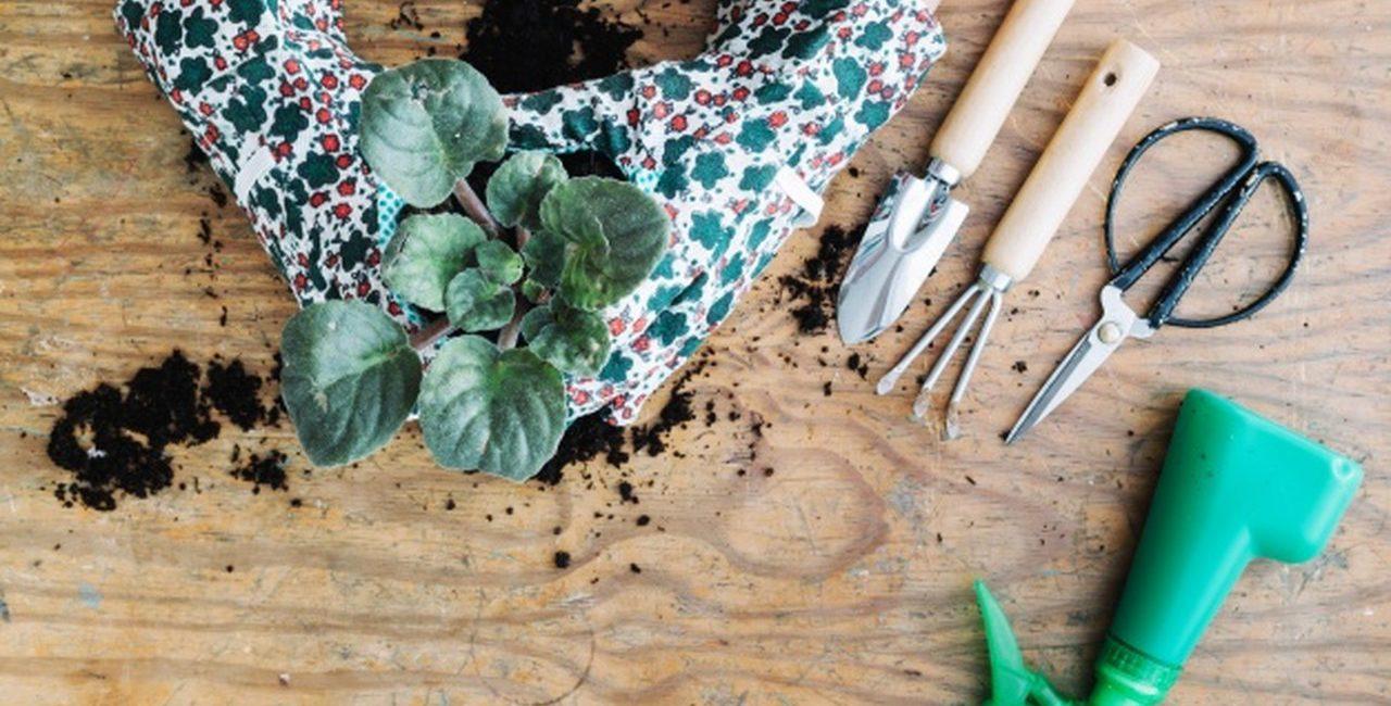 plantando-flor-o-que-e-argila-expandida