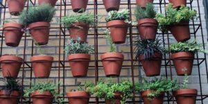 parede com vasos jardim vertical de sol