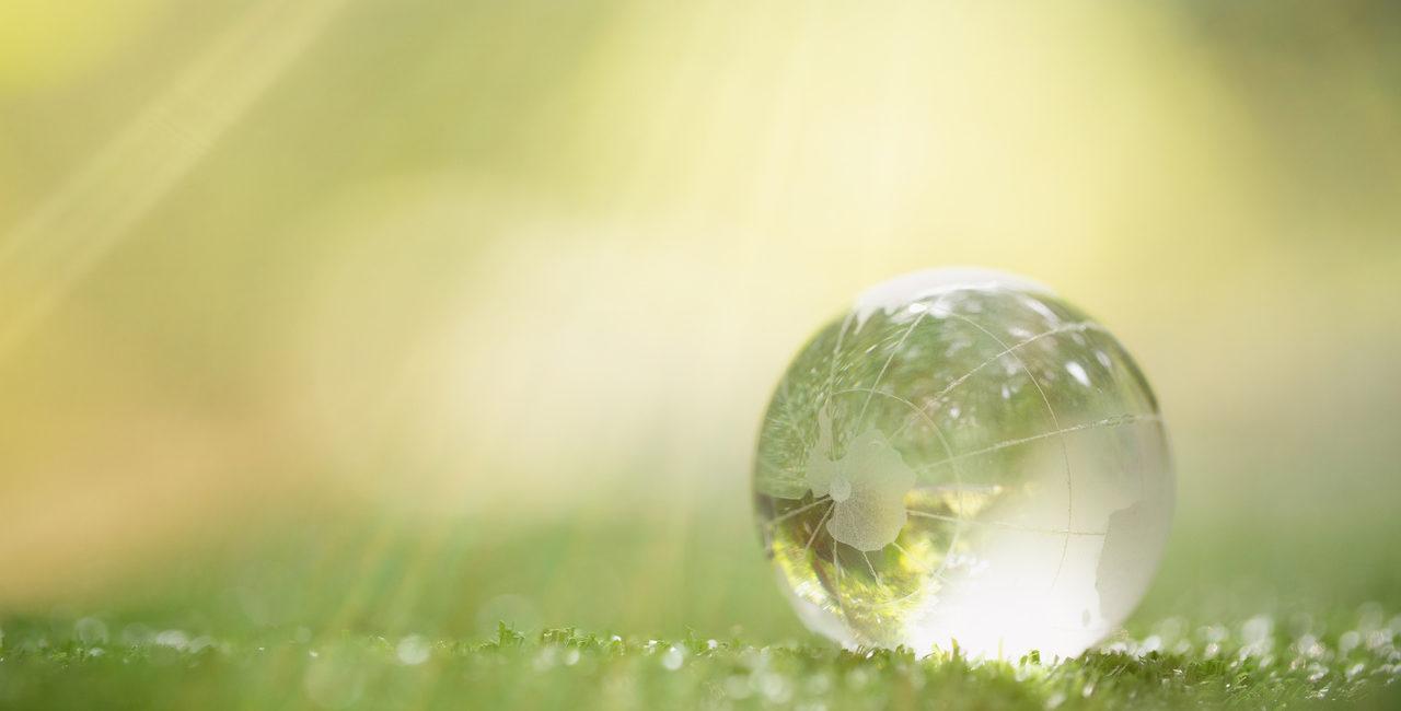 raio de sol na grama ilustrando passivo ambiental