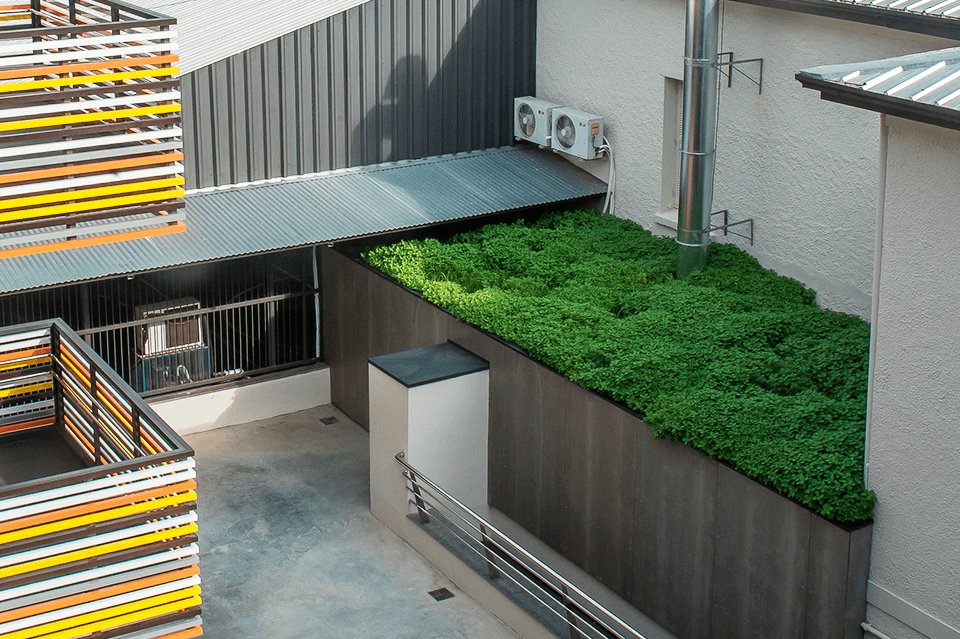 edificacao com tipos de telhado verde
