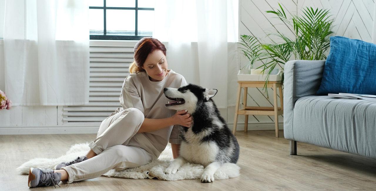 mulher com cachorro na sala de estar
