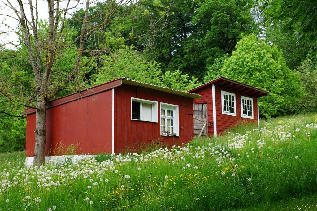 tiny house vermelha em meio à natureza