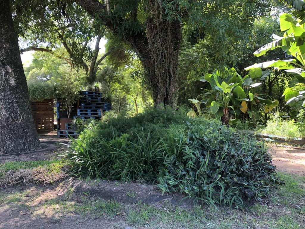 terreno com plantas, árvores e muros de contenção
