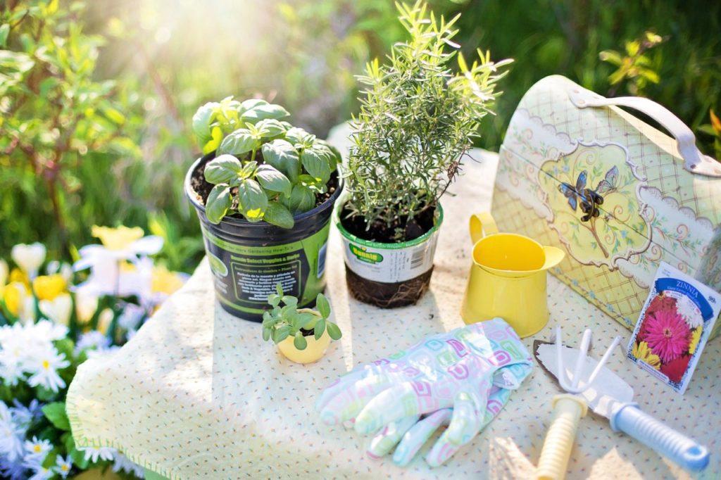 materiais para fazer cultivar jardim sustentável