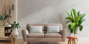 sofa e plantas ornamentais para sala