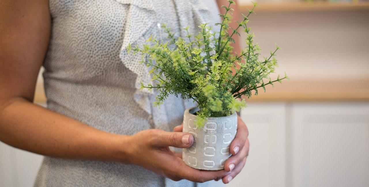 mulher segundando vaso com planta