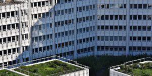 coberturas de predios com telhados sustentaveis